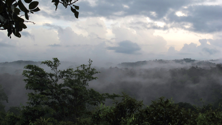 Agua Salud Project–Panama